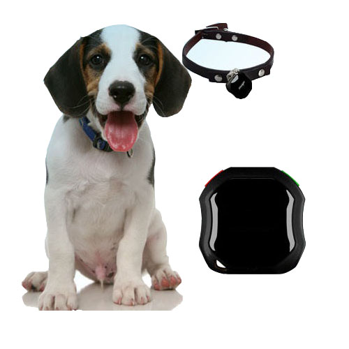 anti lost waterproof  pet GPS tracker with free app for iPhone and Android